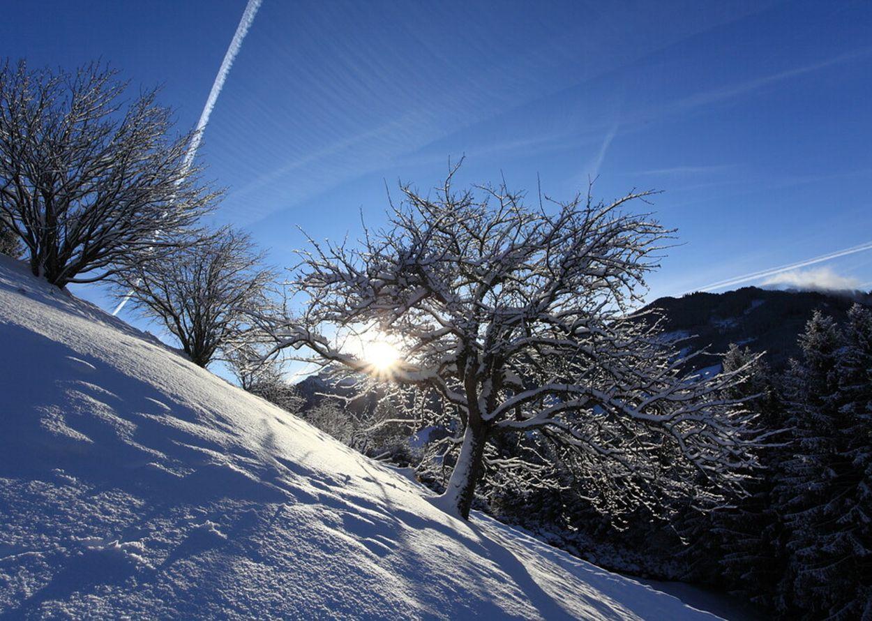 winterlandschaft-stadluck-1000x667.jpg