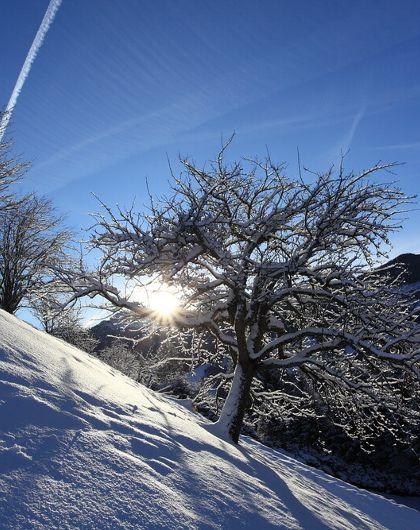 Ski- & Weingenusstage