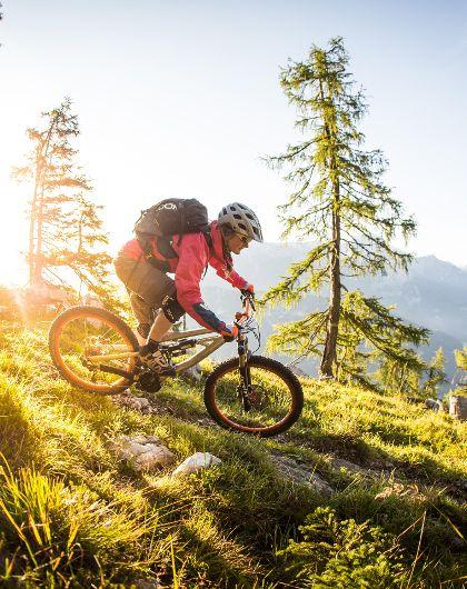 Mountain Experience E-Bike