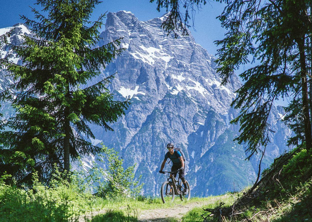 bike, roli _A7S4139-2.jpg